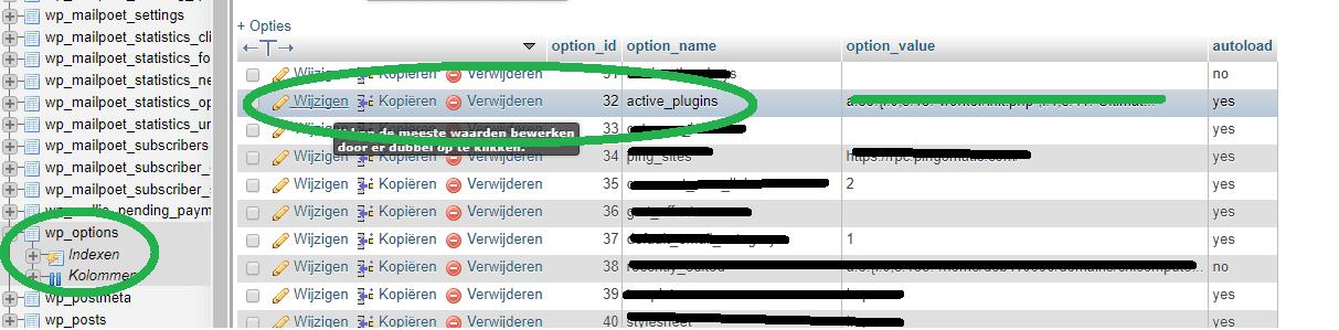 wordpress plugins wijzigen in phpadmin