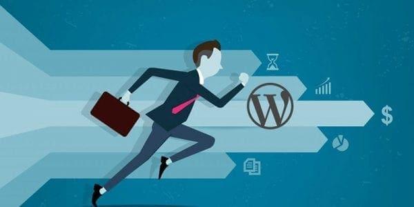 Snelle wordpress webhosting